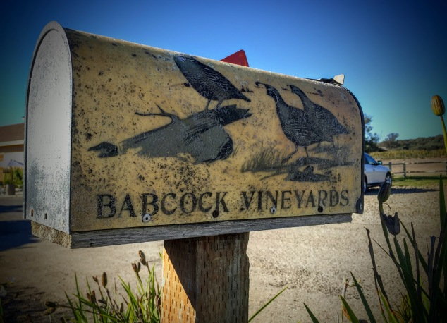 Babcock Winery Mailbox