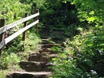 Royal Terrace Stone Steps