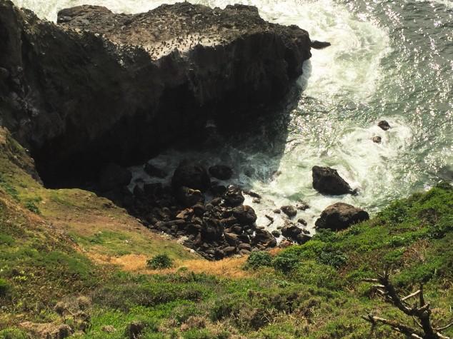 Sea Lion Caves Florence Oregon