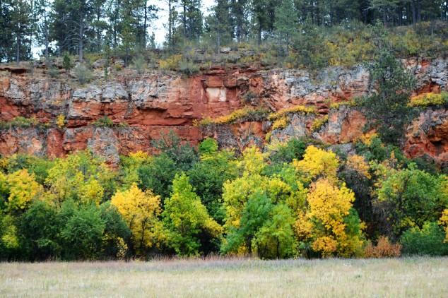 Fall Colors Custer State Park.JPG