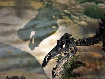 Dinosaur Museum Thermopolis