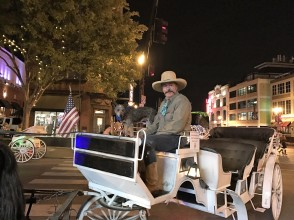 carriage-rides