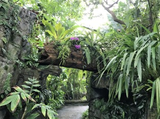 climatron-path-arch