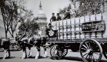 clydesdales-historic-photo-washington-dc
