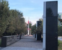 pathway-of-history