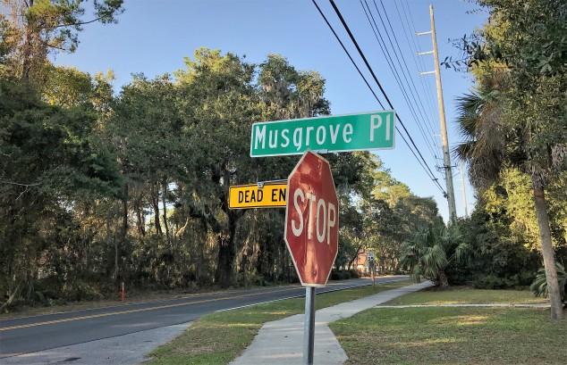 musgrove-place