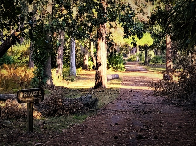 musgrove-plantation-access-road