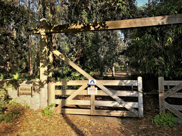 musgrove-plantation-entry-gate