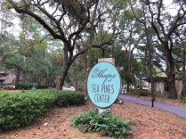 shops-at-sea-pines